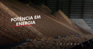 Read more about the article Veja a importância da biomassa e seu potencial para gerar energia
