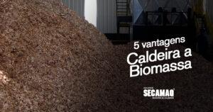 5 vantagens ao adquirir uma caldeira a biomassa