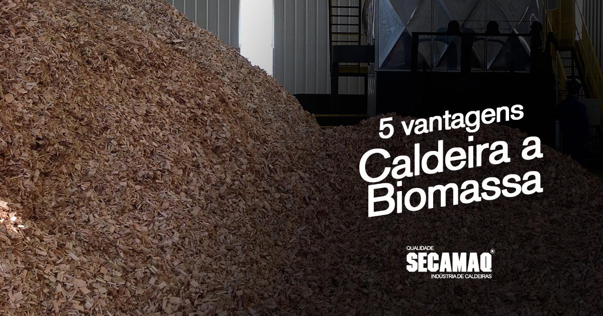 Read more about the article 5 vantagens ao adquirir uma caldeira a biomassa