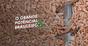 Read more about the article Produção de energia a partir de biomassa: um grande potencial brasileiro