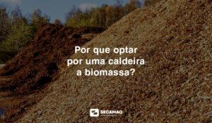 Read more about the article POR QUE OPTAR POR UMA CALDEIRA A BIOMASSA?